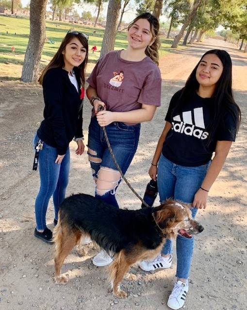 Cheer Valley Humane Society 20191026 (9)