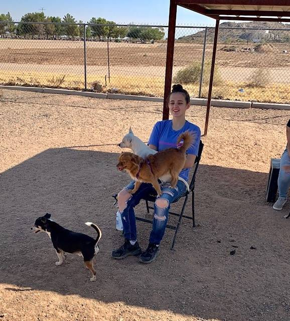 Cheer Valley Humane Society 20191026 (6)