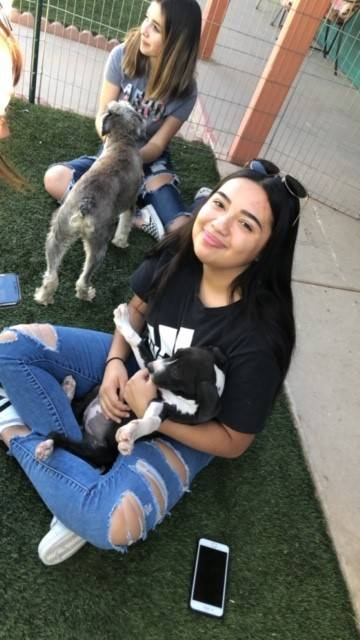 Cheer Valley Humane Society 20191026 (1)