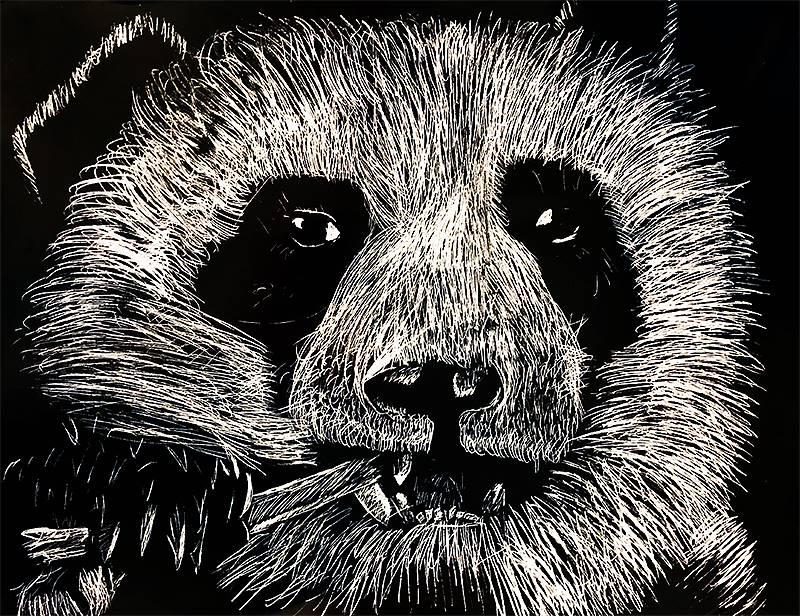 Scratchboard Illustration 20191122 (16)
