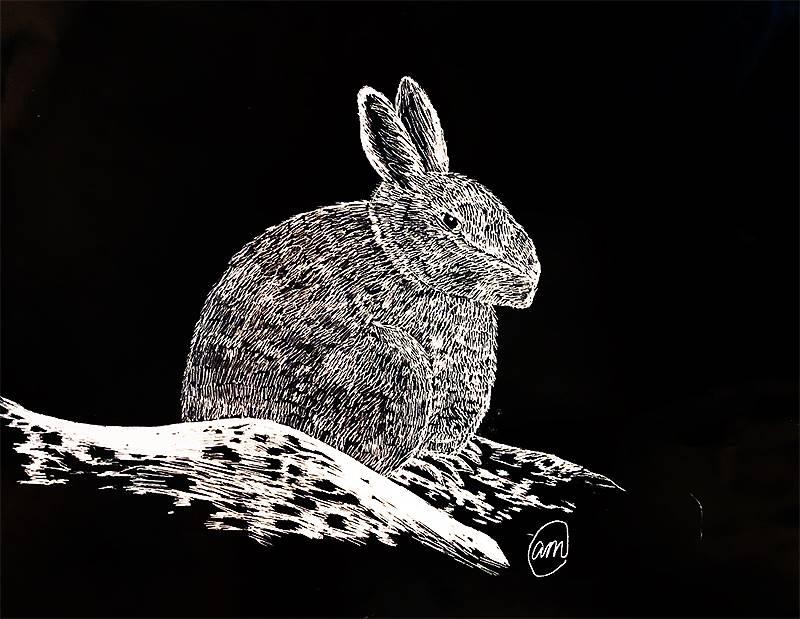 Scratchboard Illustration 20191122 (19)