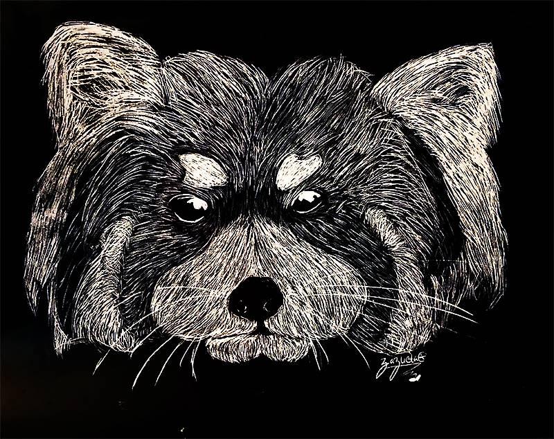 Scratchboard Illustration 20191122 (17)