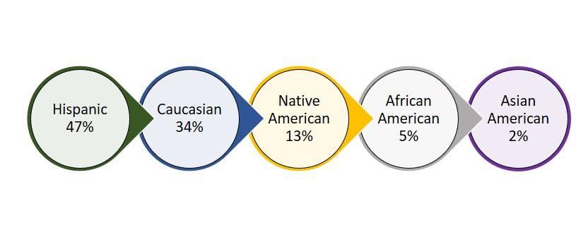 Ethnicity  000000.DOProfileEthnicityUpdated20200220